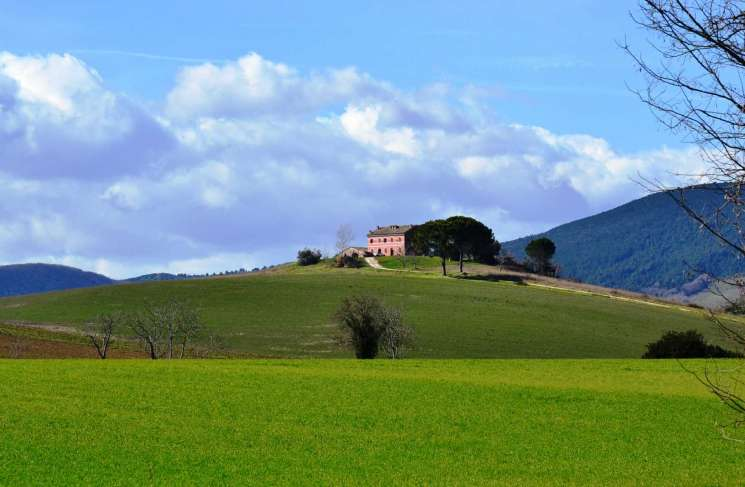 Why invest in Le Marche?